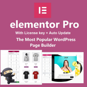 elementor pro with license key